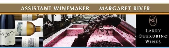 Assistant Winemaker - Cherubino Wines
