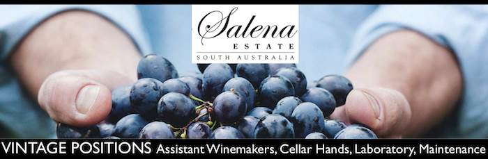 Vintage Roles (Multiple Positions) & Maintenance - Salena Estate Wines